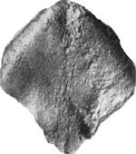 269-112а.JPG