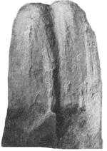 269-92а.jpg