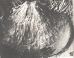 279-70.jpg