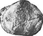 279-74.jpg