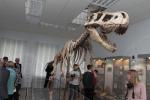Открытие музейного зала «Палеонтология»