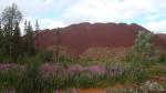 Институт геологии Коми составит прогноз развития МСБ алюминиевой отрасли региона